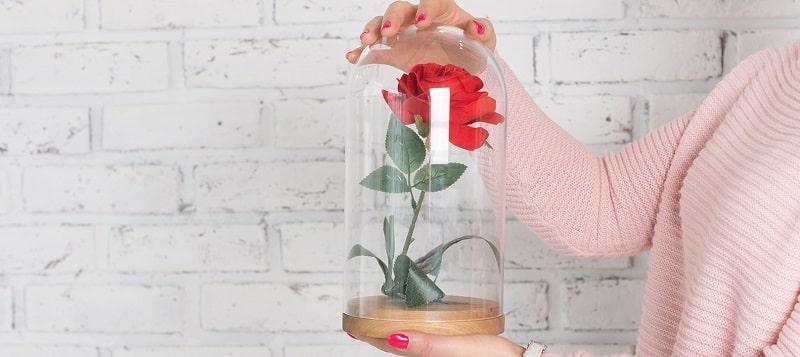 Pourquoi offrir une rose éternelle sous cloche