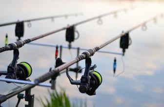 Pêche à la carpe : êtes-vous prêt pour la nouvelle saison ?