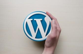 Pourquoi choisir WordPress pour la création de votre site?