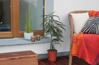 Pourquoi choisir le bois composite pour sa terrasse
