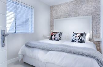 Quelques informations pour se débarrasser des punaises de lit