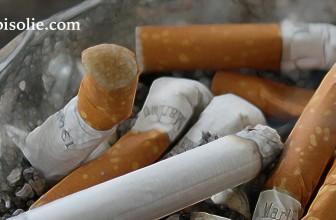 Comment fumer la farine CBD?