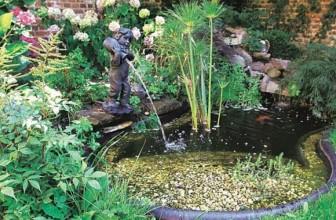 Bassin de jardin ou piscine, que choisir?