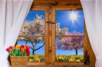 Quelle menuiserie pour vos fenêtres