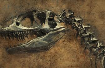 La sombre bande annonce de Jurassic World 2