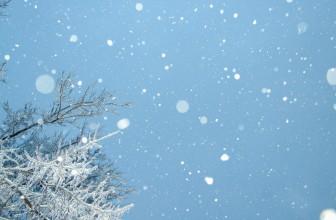 Quelles sont les activités à prévoir à Lille cet hiver