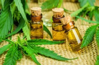 Huile de CBD : une huile naturelle aux multiples bienfaits ?