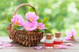 3 bienfaits méconnus de l'huile de musquée