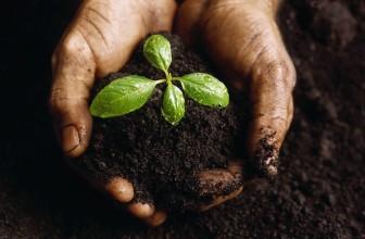 Réduire sa production de déchets grâce au compost