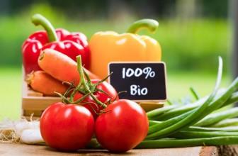 Les produits biologiques à connaitre pour le jardin : potager et fleurs