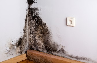 Comment savoir si mon logement est trop humide ?