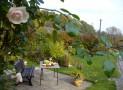 Les nouvelles plantes tendances pour l'aménagement d'une terrasse