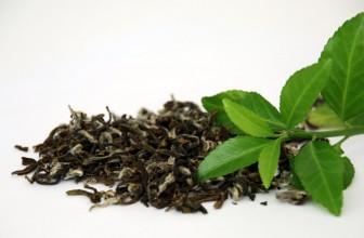 Spécialiste Francais en thé vert de haute qualité